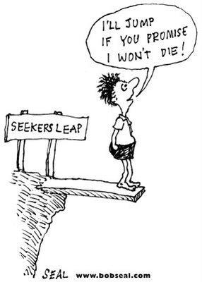 Seeker's Leap