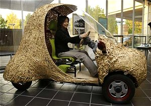 Bamboo electric car