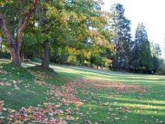 Bitter Lake Park