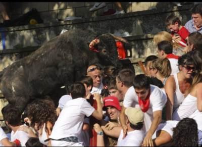 Bull tramples crowd