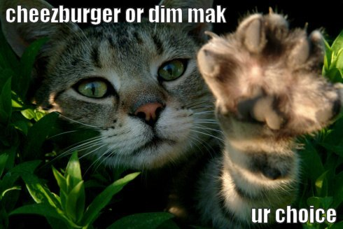 Cheezburger or dim mak ur choice