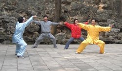 Chen style Tai Chi Chuan practice (photo by pfctdayelise)