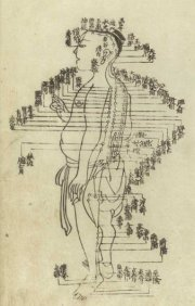 Acupuncture chart from the Ming dynasty