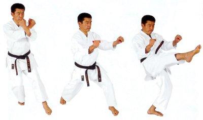 Jion kata